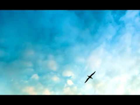 Coran Audio Français: Sourate 35 - Fatir (Le Créateur)
