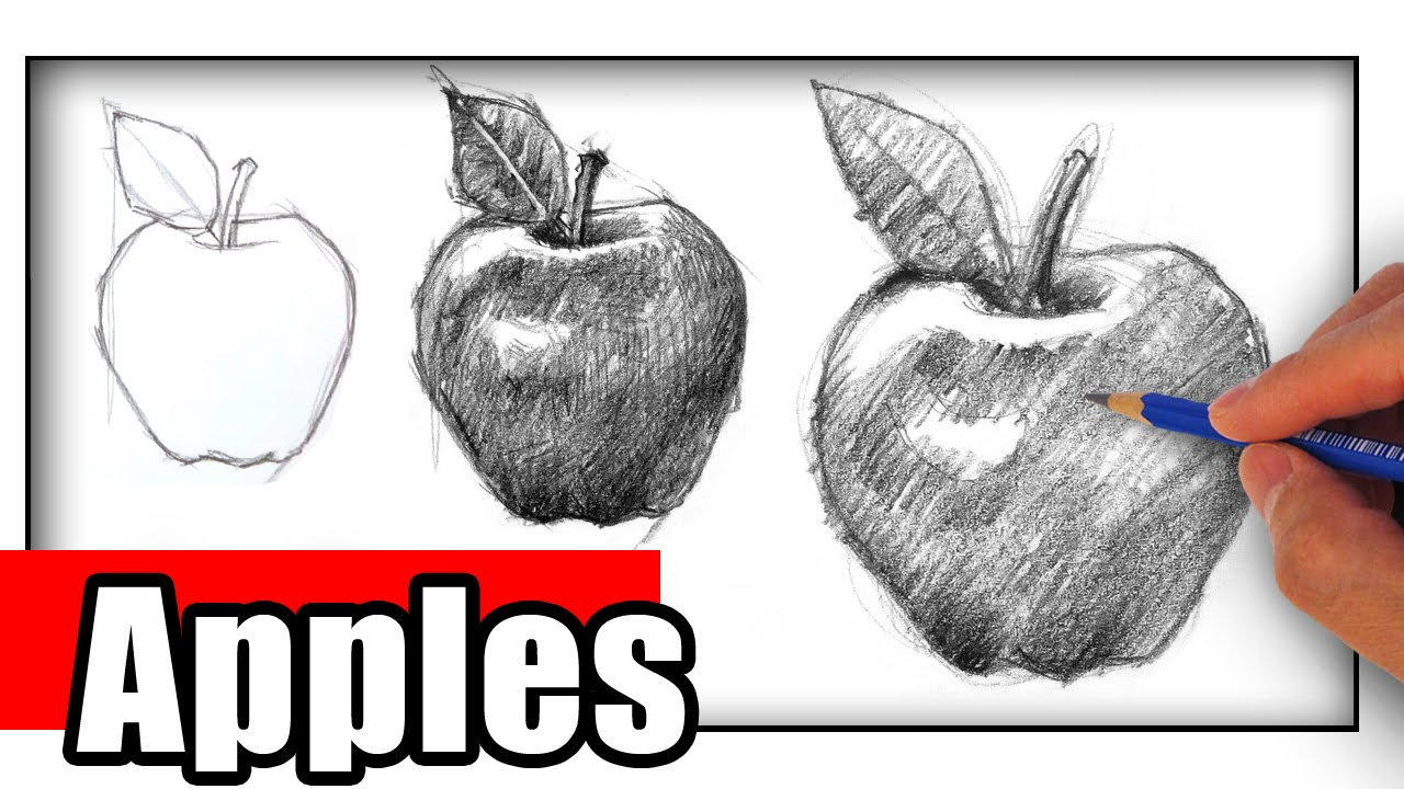 How To Draw An Apple It S Important Youtube