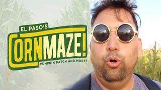 El Paso Corn Maze