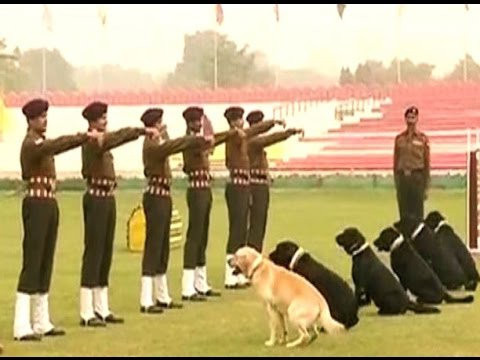 Dog squads to perform on Republic Day, have been given special training