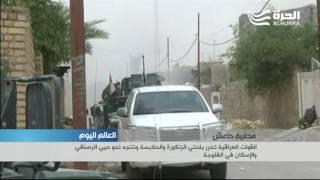 قائد عمليات تحرير الفلوجة يقول إن حيين فقط لا يزالان تحت سيطرة تنظيم داعش