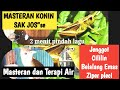 Masteran Konin Jenggot Cililin Belalang Emas Sambung Ziper Pleci Terbaik   Mp3 - Mp4 Download