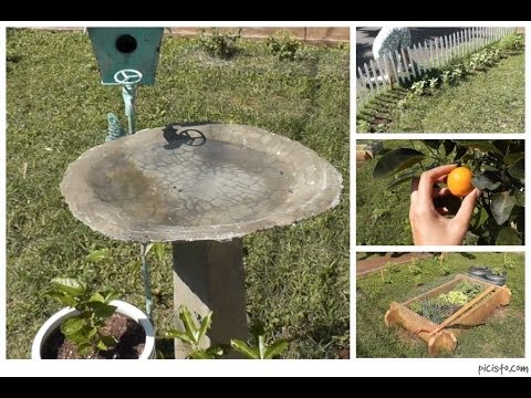 Cottage Living: DIY Bird Bath, Garden Update   YouTube