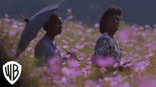The Color Purple: Everything Wants to Be Loved thumbnail