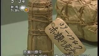 阿部知代 瀧口修造 夢の漂流物 世田谷美術館 赤瀬川原平.