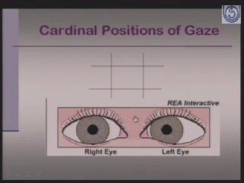 BSCHOT Optometry Practices 005 Methods of Eyes Examination 2