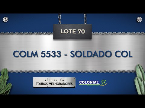 LOTE 70   COLM 5533