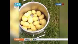 Датчанин изобрел оригинальный способ чистки ведра картошки за 1 минуту