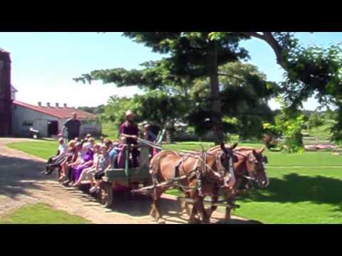 Amish Organic Vegetable Farm