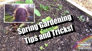 More Than 7 Spring Garden Tips and Tricks! 2 Best Spring Herbs from Seed, SFG Planting Tool, MORE!