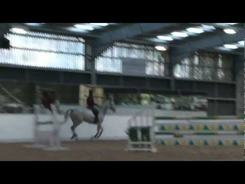 Ben Maher Schooling the inexperienced Showjumper