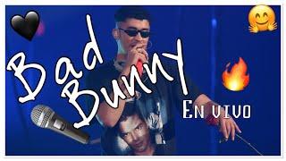 Bad Bunny live at the Allstate Arena Chicago IL, viva Latino Spotify