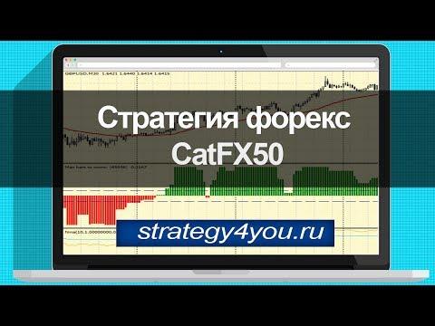 Стратегия форекс CatFX50