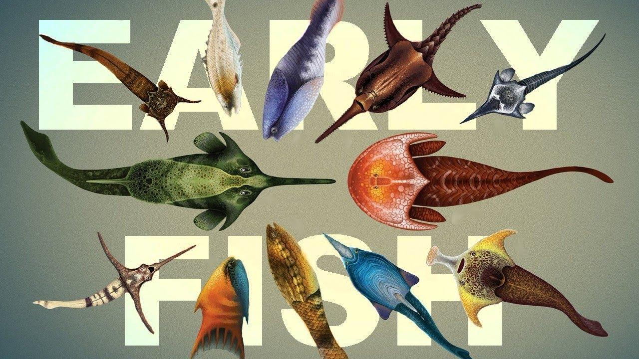 Картинки про рыбалку в отпуске рекомендует устанавливать
