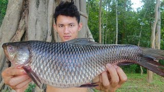 Fish Soup Recipe - Cooking Fish Sour Soup For Lunch In Forest