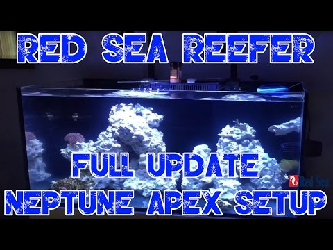 Red Sea Reefer 250    FULL UPDATE   Neptune Apex Setup