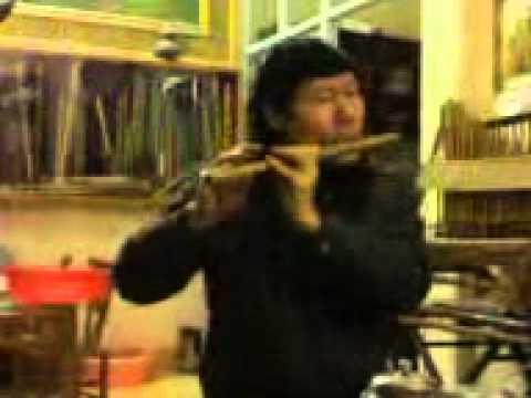 Lý hoài Nam - thầy Triệu Tiến Vượng - Th03-2011- upload by Cao Tri Minh
