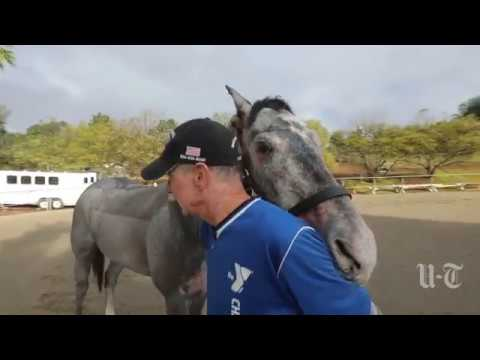 Burned Trainer Herrick, Horse Travel Fire-Recovery Road Together   San Diego Union-Tribune