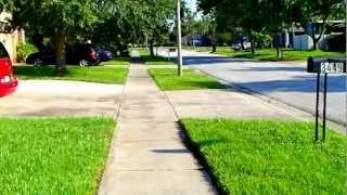 № 2538 США О чистоте на улицах