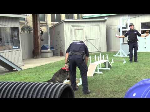 New York State Police Exhibit Canine/Bomb Disposal Unit Demonstration 2015