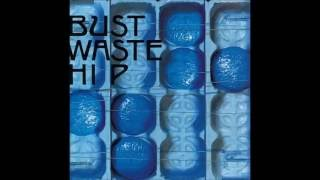THE BLUE HEARTSのBUST WASTE HIPより.
