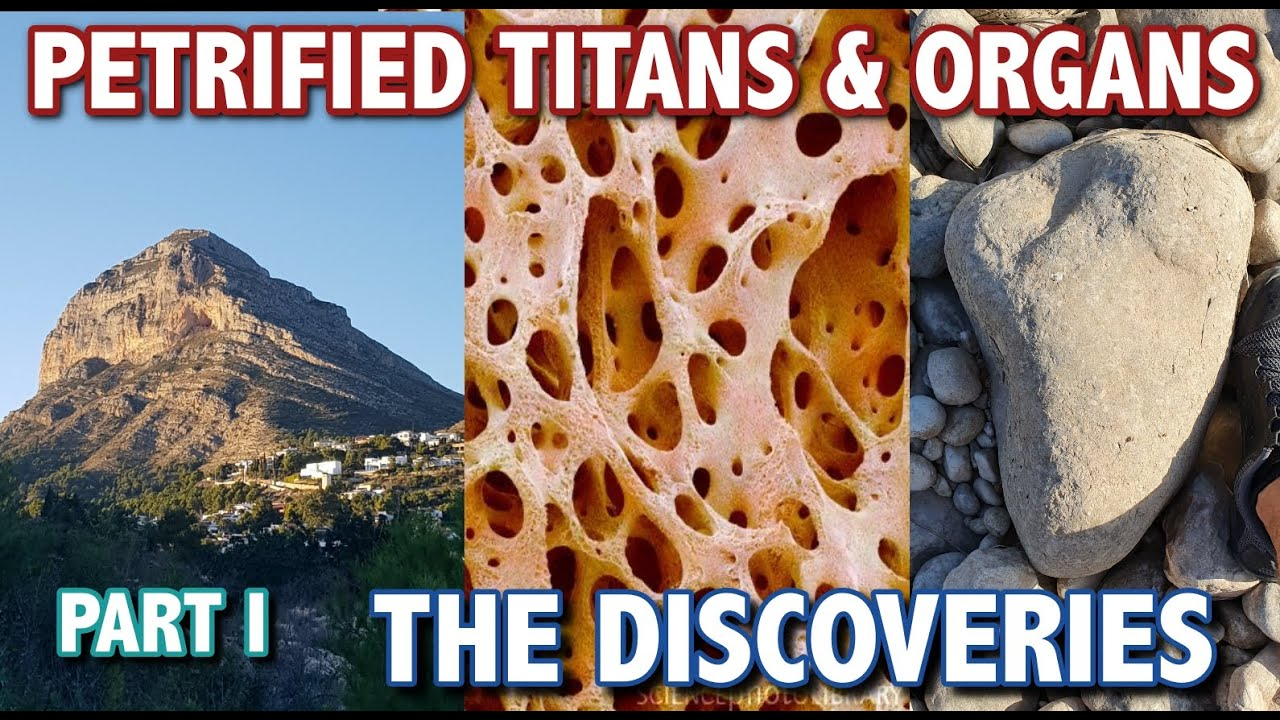 PETRIFIED TITANS & ORGANS - PART 1 -  THE DISCOVERIES
