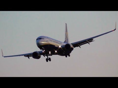 Storm Eleanor Very Windy Landings at Dublin Airport Inc. A330 Go Around!