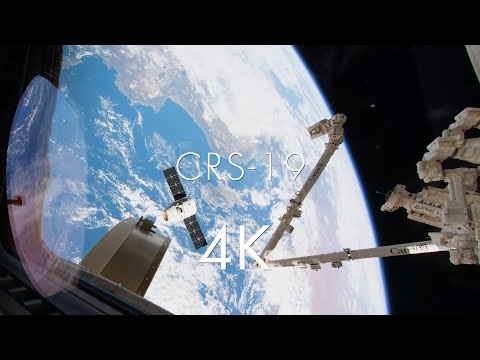 CRS-19 [time-lapse]