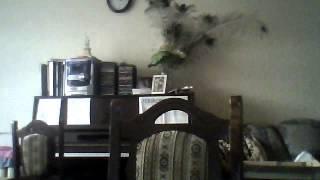 Видео с веб-камеры. Дата: 21 марта 2013г., 17:02.(Меня зовут Тимур.Я новенький в ютубе,и я не знаю как сделать так чтоб ви не видели меня или мою комнату а..., 2013-03-21T15:04:10.000Z)