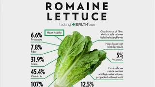 Romaine Letuce Nutrition Facts And Health Benefits