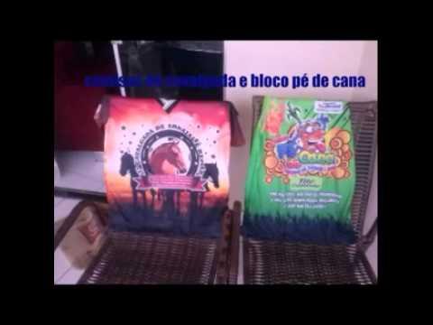 Povoado de Arraial Oliveira dos brejinhos BA