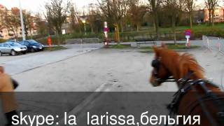 Русское домашнее видео смотреть онлайн.Рождество!