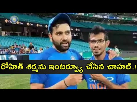india-vs-australia:-yuzvendra-chahal-interviews-rohit-sharma-on-his-century-in-sydney
