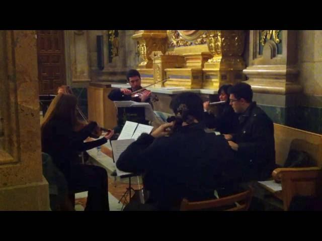 Adagio Albinoni - musia bodas - flauta, piano, trio de cuerda - pon musica en tu boda Murcia.MOV