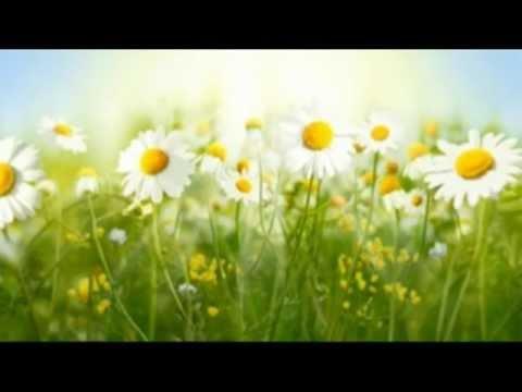 Sommar i P1 (music)