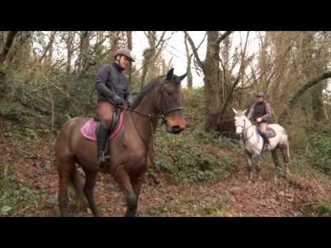 Beecher Hunt Schooling