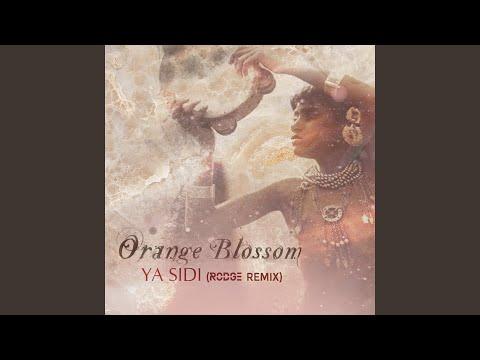 Ya Sidi (Rodge Remix) indir