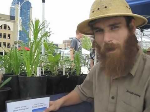 Wildlife Gardening @ Waterloo Farmers' and Crafters' Market Cooperative