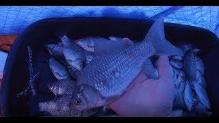 Ловля Крупного КАРАСЯ Зимой со льда Ночная рыбалка Много Крупногокарася и маленько мелочи