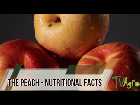 The Peach - Nutitional Facts - TvAgro By Juan Gonzalo Angel