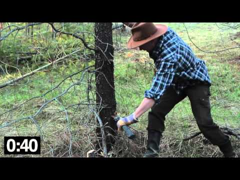 How to Silently Cut Down Trees Quickly on the (Homestead)