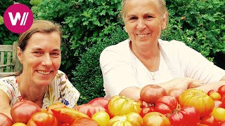 Burgenland - Cooking Tomatoes like Granny | What