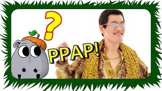 PPAP Pen Pineapple Apple Pen - 🍎 Guinea Pig Style🍍 | Die Meeries