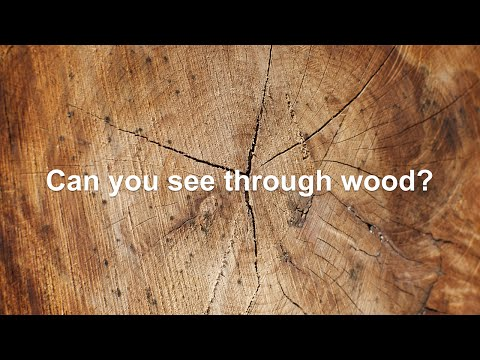 Wood you can see through