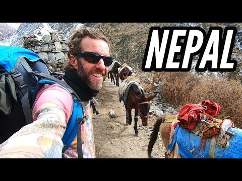 HOW EXPENSIVE IS NEPAL? And How to Trek the Himalayas