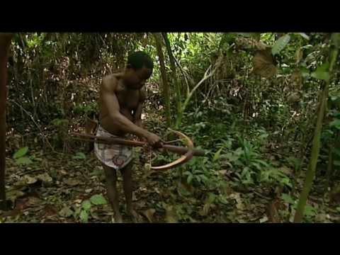 The Last Hunters in Cameroon (Los Últimos Cazadores en Camerún)