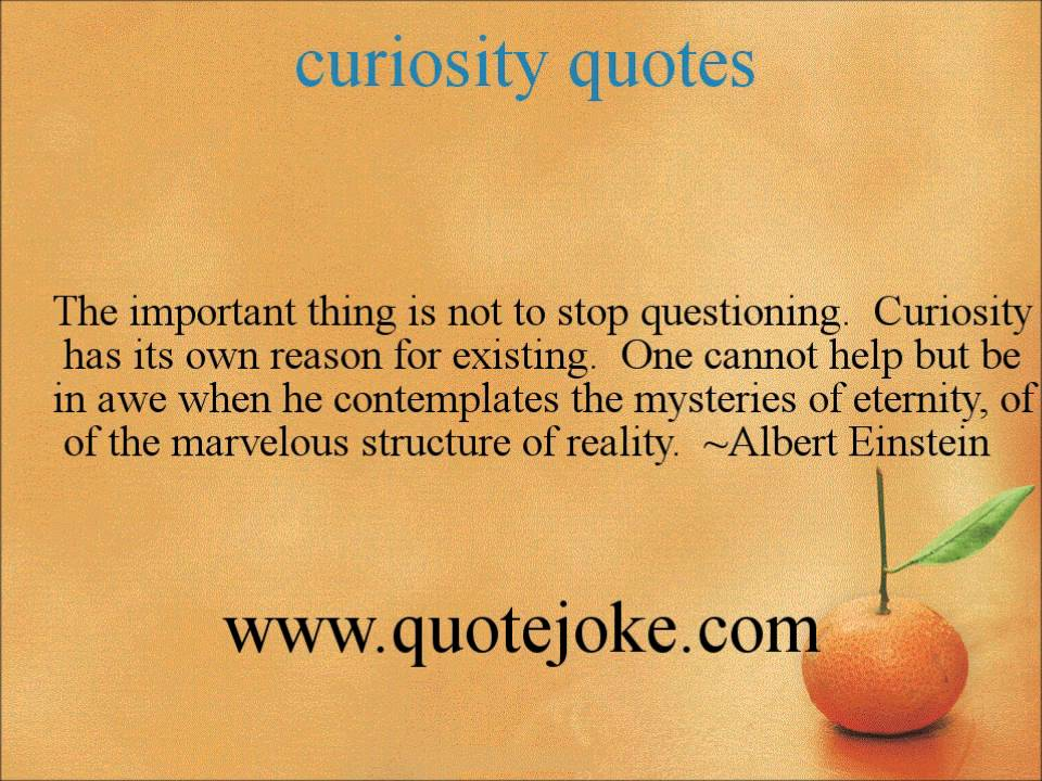 Curiosity Quotes Httpquotejoke YouTube Adorable Curiosity Quotes