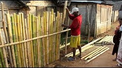 Making a fence from bamboo in a Madagassian village