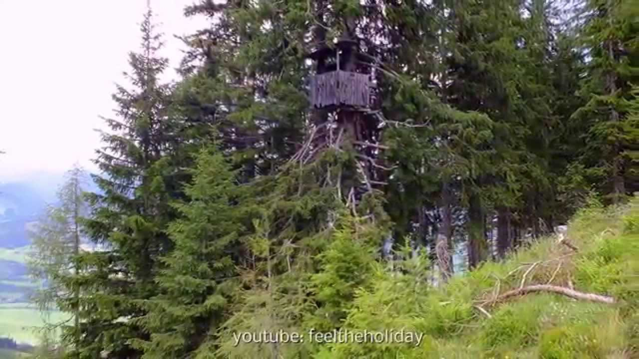 Hunting Mountains Alps Austria Deer Stand Hochsitz High