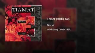 Play The Ar (Radio Cut)